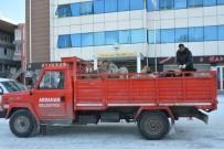 ARDAHAN BELEDIYESI - Ardahan'da Sokak Köpekleri Toplanıyor