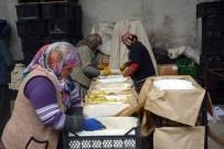 İHRACAT - Ortadoğu'ya Elma İhracatı Başladı