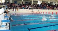 SPOR BAKANLIĞI - Van'da Yüzme Grup Yarışmaları Start Aldı