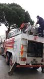 İTFAİYECİLER - Ağaçta Mahsur Kalan Kediyi İtfaiye Kurtardı