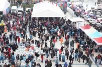 HAMSİ FESTİVALİ - Küçükçekmeceliler Hamsiye Doydu