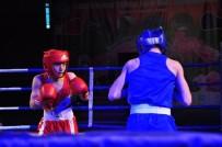 Türkiye Yıldız Erkekler Ferdi Boks Şampiyonası Sona Erdi