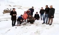 BENDİMAHİ ÇAYI - Buz Tutan Çayda Kayak Ve Semaver Keyfi