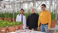 GÜN IŞIĞI - Selçuk, Tuzlu Topraklara Uygun Buğday Üretmeyi Hedefliyor