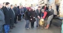 Kastamonu'da 9 Genç Çiftçiye 360 Koyun Verildi