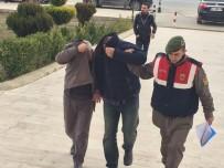 KAÇAK KAZI - Milas'ta Kaçak Kazıcılar Adliyeye Sevk Edildi