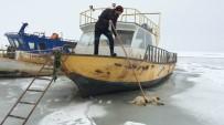 SIBIRYA - Suya Düşen Köpek Donarak Öldü