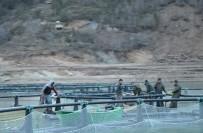 Borçka Barajı, Kafes Balıkçılığı İle Ön Plana Çıkıyor