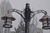 SIBIRYA - Kars'ta Sis, Soğuk Hava Ve Kırağı Hayatı Olumsuz Etkiledi
