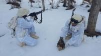 Komandolar Yaralı Halde Doğan Buldu