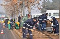 HERCAI - Yeşil Alanlarda 129 Bin Lale Ve 80 Bin Menekşe Açacak