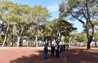 FUTBOL SAHASI - Antalya'ya Yeni Mesire Alanı