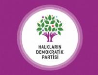 HDP - HDP'li 4 milletvekili hakkında terör fezlekesi