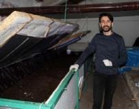 CALIFORNIA - Makine mühendisi solucan gübresi üretim tesisi kurdu
