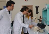 CERRAHPAŞA TıP FAKÜLTESI - Selçuk Üniversitesi, Derin Yaraları İyileştirecek Sinek Larvası Üretecek