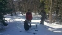 ORMANA - Dağda Kaybolan Kadın Kayakçı Ayak İzlerinden Bulundu