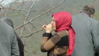 KOZALAK - Külleme Hastalığına Karşı Fındık Bahçesinde Uygulamalı Eğitim
