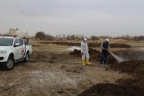 ŞİKAYET HATTI - Niğde Belediyesi Sinekle Mücadeleye Başladı