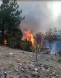 ORMAN YANGINI - Payas'ta Orman Yangını