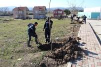 KALAFAT - Biga'da 3 Ayda 7 Bin Ağaç Dikiliyor