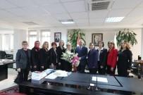 KADINLAR GÜNÜ - Türk Kadınlar Birliğinden Rektör Elmas'a Ziyaret