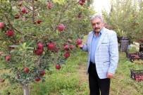 Karaman Elmasında 500 Bin Ton Rekolte Beklentisi