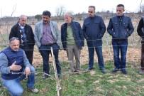 BÜYÜKŞEHİR YASASI - Tekirdağ'da Tarıma Destek Çalışmaları