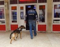 TİMSAH - Gaziantep Dedektör Köpekli Huzur Operasyonu