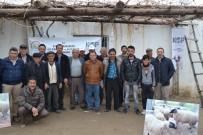 ÇUKURKUYU - 'Göçe Karşı, Bafra Koyunu Yetiştiriciliği' Projesinde 115 Üreticiye Eğitim Verildi