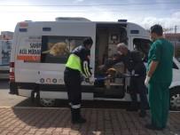 KORUMA EKİBİ - Antalya Büyükşehir'den Yaralı Hayvanlara Ambulansla Müdahale