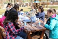 ÇAMLıCA - Çamlıca Okulları Piknik Sezonunu Açtı