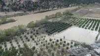 SEL BASKINI - Göksu Taştı, Ekili Alanlar Su Altında Kaldı