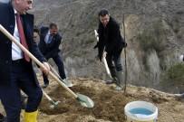 EYLEM PLANI - Gümüşhane'de Ceviz Seferberliği Devam Ediyor