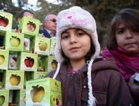 'Her öğrenciye 1 elma' kampanyası