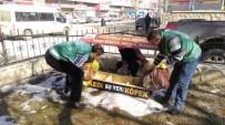 SOKAK HAYVANLARI - İpekyolu Belediyesinden Bahar Seferberliği