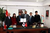 Kore Ve Türkiye'den 'Mantar' İş Birliği