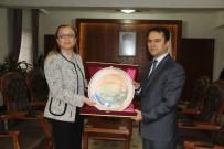 Rektör Kılıç, Vali Aktaş'a Veda Ziyaretinde Bulundu