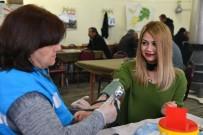 TEDAVİ SÜRECİ - Satılmışoğlu Mahallesinde Sağlık Taraması