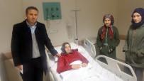 SOKAK KÖPEKLERİ - Kastamonu'da Köpeklerin Saldırdığı Öğrenci Hastanelik Oldu