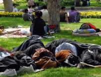 DERYA KARADENİZ - '100 kişiden 15'i uykusuz'