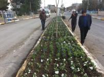 KAYYUM - Hani'de Yeşillendirme Atağı