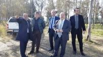 İNSANOĞLU - Altınova Belediye Başkanı Dr. Metin Oral Açıklaması