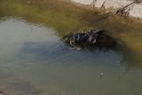 AYDıN DEVLET HASTANESI - Odun Toplarken Sulama Kanalına Düşen Yaşlı Adam Hayatını Kaybetti