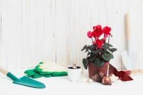 FAST FOOD - Minikler Çiçek Dikimini Öğrenecek