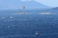 KARDAK KAYALıKLARı - Türk ve Yunan savaş gemileri Kardak'ta