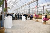 WORKSHOP - Alanya'da Su Kabağı Projesi İçin İlk Tohumlar Atıldı
