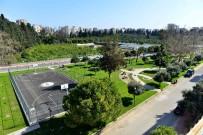 ÇIÇEKLI - Antalya'da En Güzel Ağaç Seçiliyor