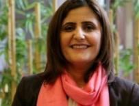 DIRAYET - HDP'li vekil gözaltına alındı