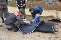 Maden İşçilerini Taşıyan Minibüs Kaza Yaptı Açıklaması 2 Ölü, 1'İ Ağır 24 Yaralı