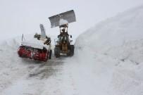 ÇIĞ DÜŞMESİ - Muş'ta Çığ Düşen Bölgede Karla Mücadele